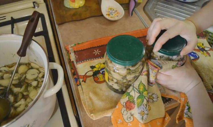 Белые грибы на зиму рецепты