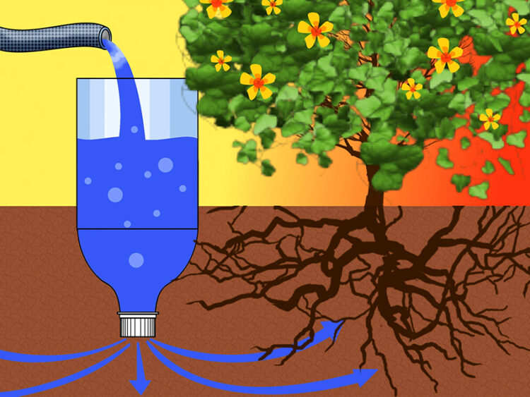 Капельный полив своими руками